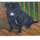 Dogs Portrait Painting