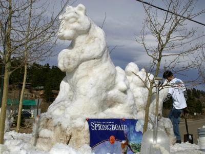 Spring Board Bear