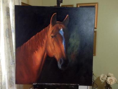 Horses head 3/4 36x36 canvas in oil