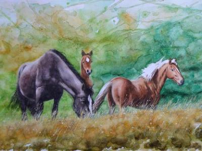 Equine family, 80cm x 60cm, 2014
