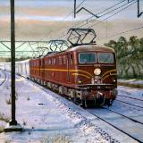 Indian Pacific at Bell