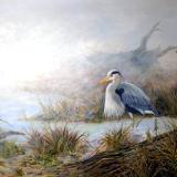 "Morning Fog #1, Great Blue Heron, 30"" x 40""  (SOLD)"