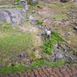 Scree Slope