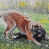 Canine brotherhood, 38cm x 56cm, 2021