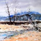 Winter at Castlewood State Park
