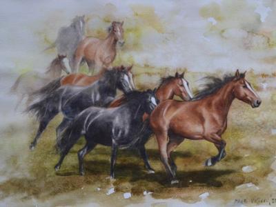 Wild horses of Kentucky,  35cm x 50cm, 2014