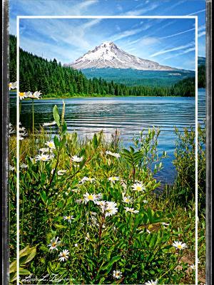 Trillium Lake and Mt. Hood