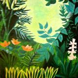Forest ac. Rousseau