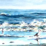 Beach with Gulls #3