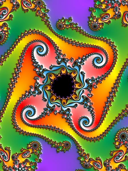 Geckotui Gallery - Contemporary NZ Artist  Carol Skinner