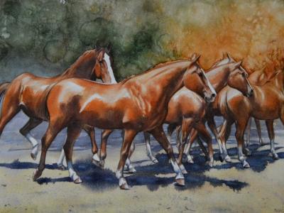 Dance of horses 1, 38cm x 56cm, 2020