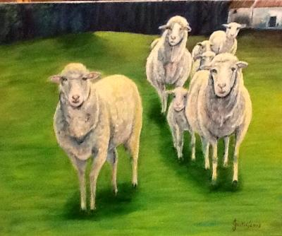 The sheep of Teira