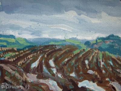 Muddy field at Cadeleigh, Mid Devon
