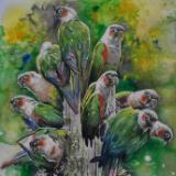 Parakeets bouquet, 38cm x 56cm, 2020