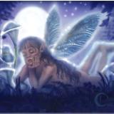 Moon Dream Fairy