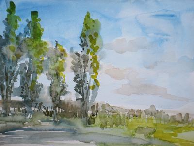 Fillmore Poplars