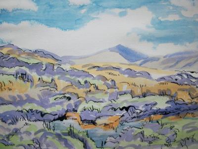 Valley of the Taw, North Dartmoor