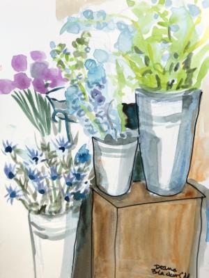 Delphiniums at the Flower Shop