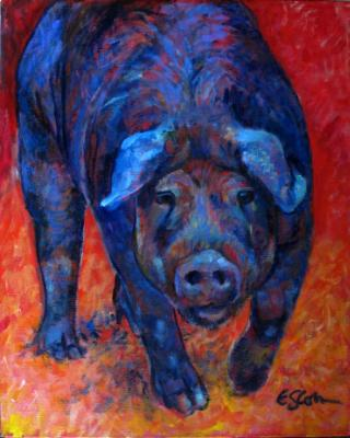 A Pig with an Attitude