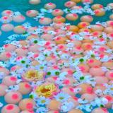 Boobs & Flowers