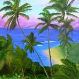 """Above Ke'e beach, choose price and size in """"buy now"""""""