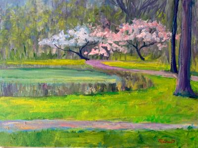 Daniel Wright Woods in the Springtime