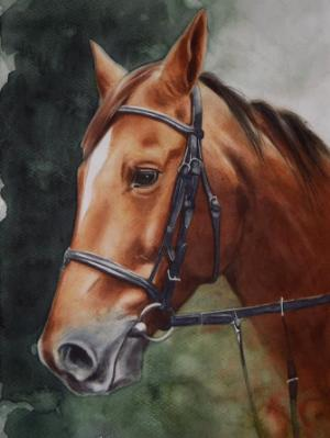 The beauty of the Argentinian Paso Horse, 38cm x 56cm, 2018