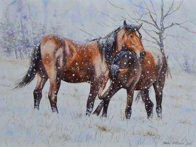Horses on the snow, 80cm x 60cm, 2014