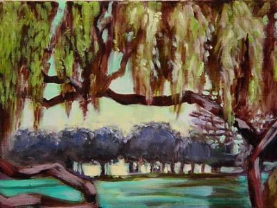 canopy (julliard park)