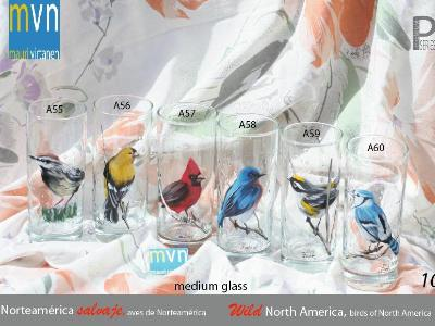 Set of Handpainted glasses: BIRDS OF NORTH AMERICA