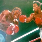 Boxing Art