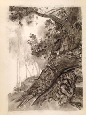 Beginning Drawing at UCSD, Landscape (Charcoal)