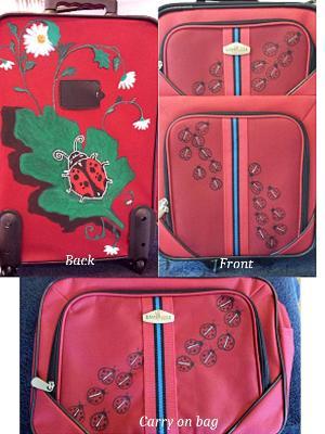 Red ladybug 2 piece set