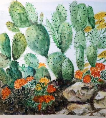 Marigold and Cactus