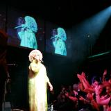 Celia Cruz, Billboard Live