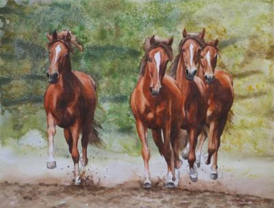 Herd of young horses, 35cm x 50cm, 2014