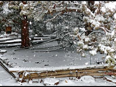 Snow Buggy