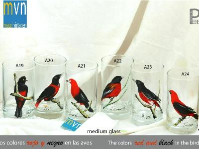 Srçet of handpainted glasses: BLACK AND RED BIRDS