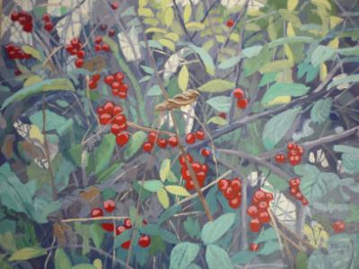 Hedgerow with black bryony berries