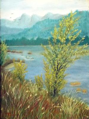 Mountain Lake #2