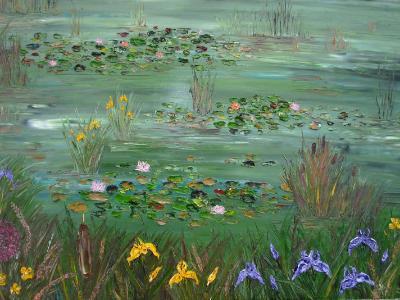 Water lillies at Headford