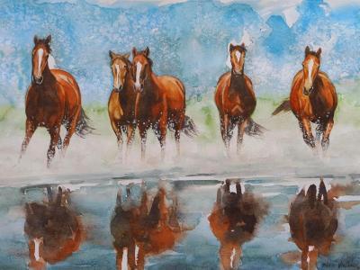 Brown wild horses, 35cm x 50cm, 2014