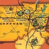Map of Chatham Co., color version