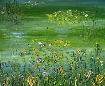 Dave's pond