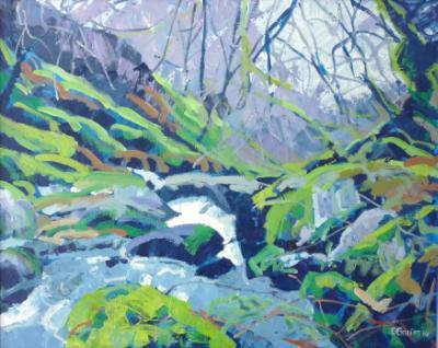 The West Okement River, near Black-a-tor, Dartmoor