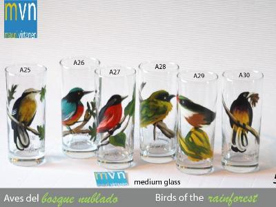 Set of handpainted glasses: BIRDS OF THE RAINFOREST