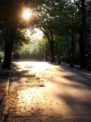 Summer Afternoon in Brooklyn