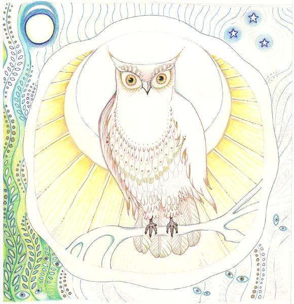 Owl Moon sketch