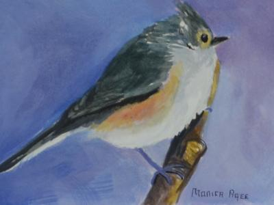 Tufted titmouse on 5x7 panel in oil