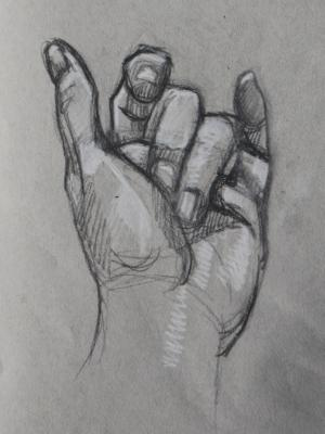 Hand Study (Curled)